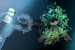https://www.pius-info.de/aktuelles/news/molekulare-schere-fuer-den-plastikmuell-moeglich/